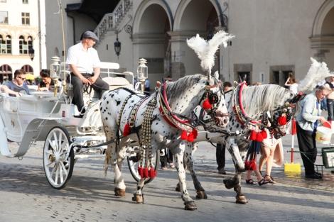 Hevosvaunut Krakovan vanhassa kaupungissa.