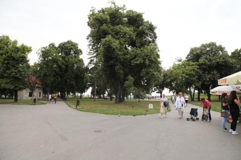 Kalemegdan on avara ja vehreä puisto.