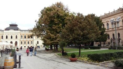 Sremski Karloci, pieni baorkkikaupunki, houkuttelee runsaasti matkailijoita vielä lokakuussakin.