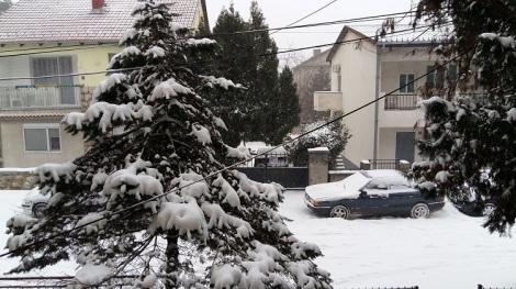 Ensilumi Belgradissa Banevo Brdossa.